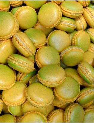 macarons passion - planet macarons